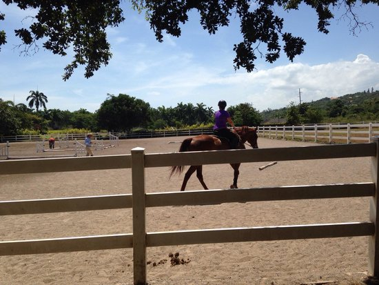 Half Moon Equestrian Center: Getting a lesson from Trina. Riding Cassanova.