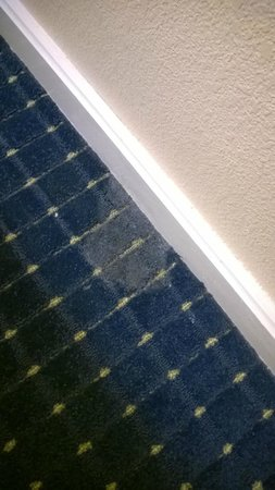 SpringHill Suites Savannah Midtown: Stain. maybe paint maybe not?