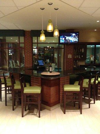 Hilton Garden Inn Wisconsin Dells: Nice Bar