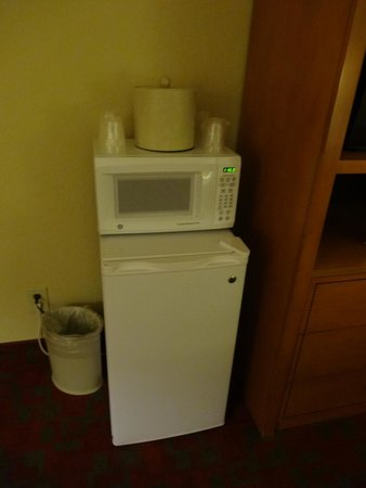 Gateway Lodge : Microwave and fridge.