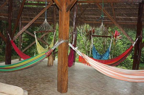 Suchipakari Amazon Rainforest Ecolodge: sitio de relajacion
