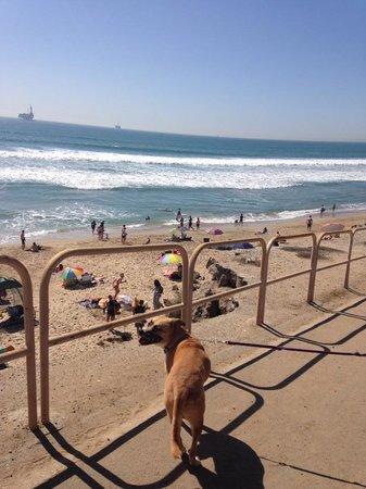 Huntington Dog Beach: walkway down to the dog beach