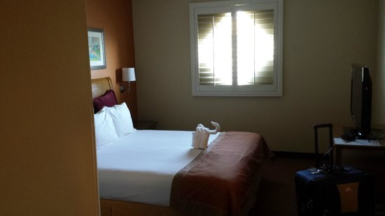 Desert Palms Hotel & Suites : Nice beds