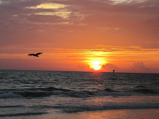 Casa Playa Resort: sunsets