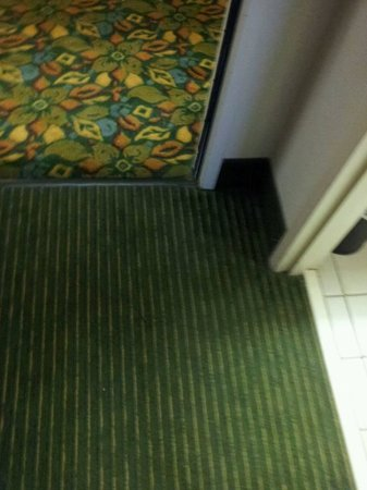 Hampton Inn Georgetown - Marina : Carpet hallway and rooms