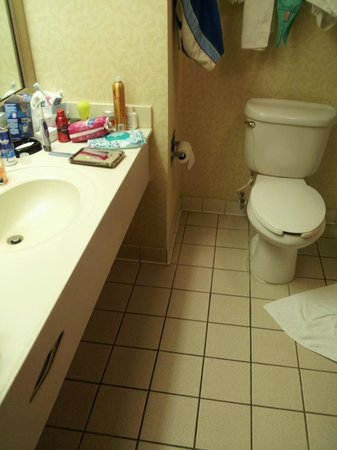 Hampton Inn Georgetown-Marina: Bathroom