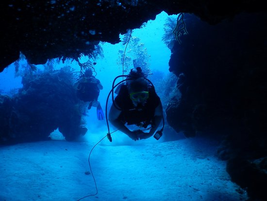 Oasis Divers: Endless visibility