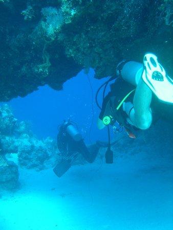 Oasis Divers: 5 star Dive Site