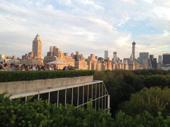 Manhattan Skyline: Met museum rooftop view