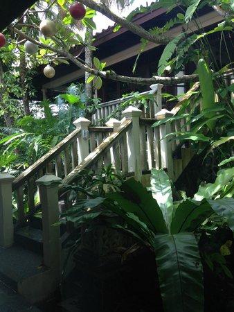 Tempat Senang Resort: View to main building from my room