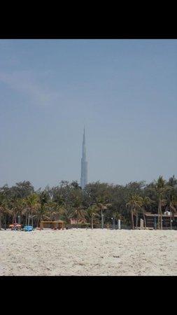 Playa y Parque Jumeira: Jumeira parck (plage payante) vue