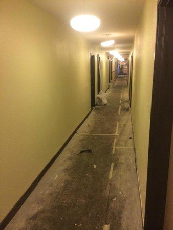 BEST WESTERN PLUS John Muir Inn : Entire hallway on second floor covered in paint.