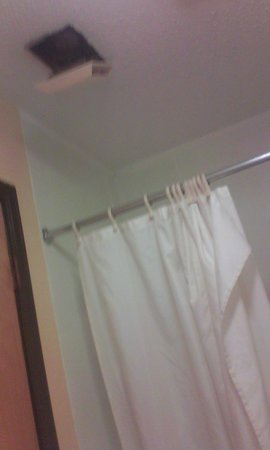 Americas Best Value Inn - Ullin/Mounds: Shower curtain looked like it had never been washed.. Pink mold.. Exhaust fan about to fall.