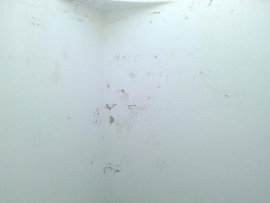 BelleVue Aquarius: Le mur en face de ma fenêtre de chambre