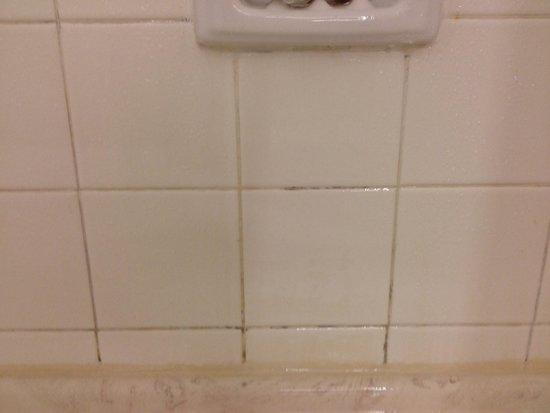 Hilton Alexandria Mark Center : Clean?