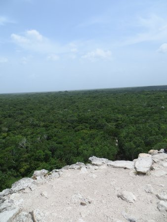 Ruines de Cobá : View from the top