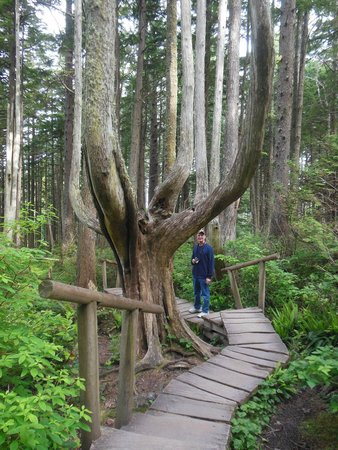 Cape Flattery Trail: Trail to the Cape