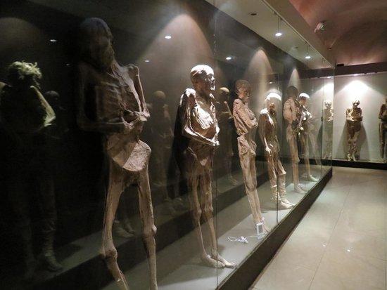 Museo de las Momias de Guanajuato : múmias