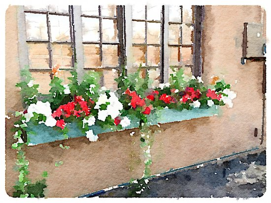 Inn on the Alameda : Charming flower boxes everywhere