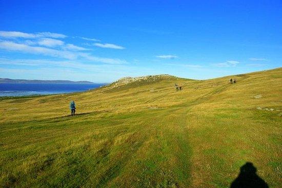 Adventure Falklands : Windswept vistas