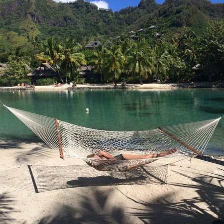 InterContinental Moorea Resort & Spa : Hammock on beach with standard beach bungalows in the background