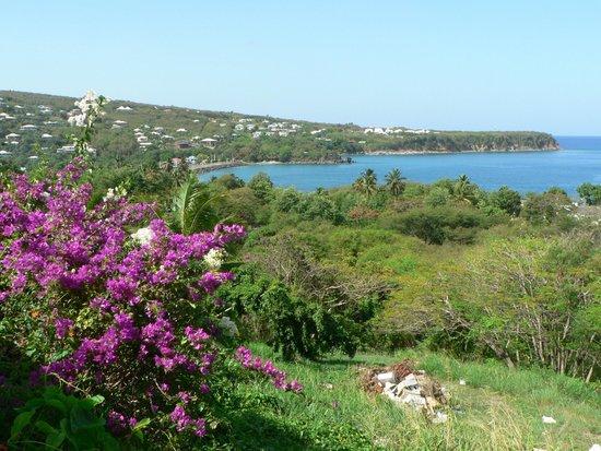 Le Rayon Vert : Vue sur déhaies et sa longue plage