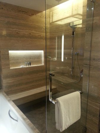JW Marriott Hotel New Delhi Aerocity: Shower
