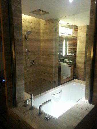 JW Marriott Hotel New Delhi Aerocity: Shower 2