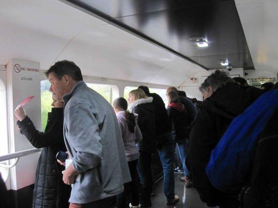 TranzAlpine Train: Open carriage on the TranzAlpine