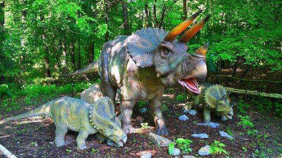 DinoPark Vyskov : Triceratops, DinoPark Vyškov