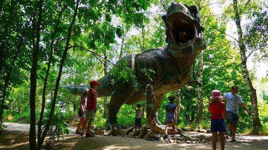 DinoPark Vyskov : Tyrannosaurus Rex, DinoPark Vyškov