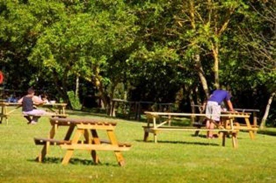Camping De La Cite : table picnic zone randonneur