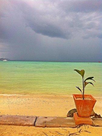 Phi Phi Island Village Beach Resort : Front Beach at high tide