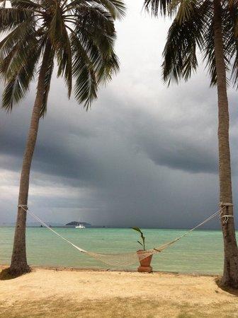 Phi Phi Island Village Beach Resort : Hammock