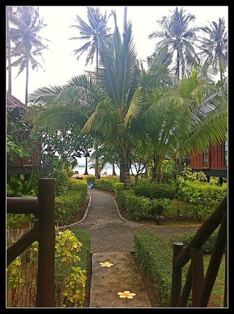 Phi Phi Island Village Beach Resort : Path from our Bungalow