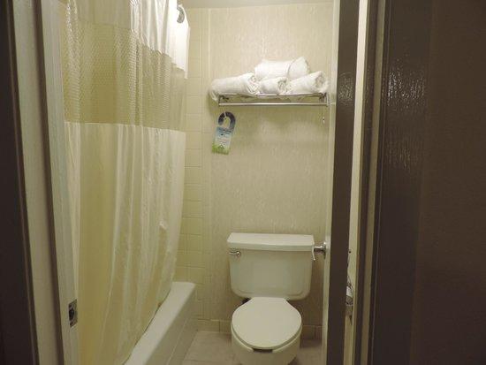 Days Inn & Suites Golden/West Denver: shower