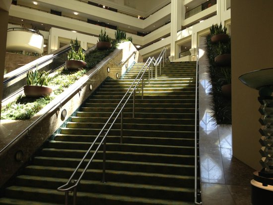 San Francisco Marriott Marquis: View from Lobby