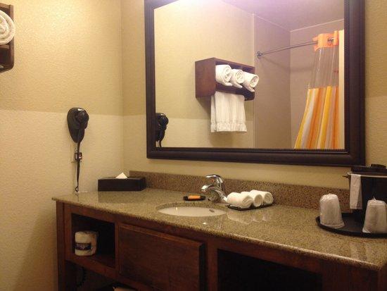 La Quinta Inn & Suites Dallas Love Field: Nice and Appointed Bathroom