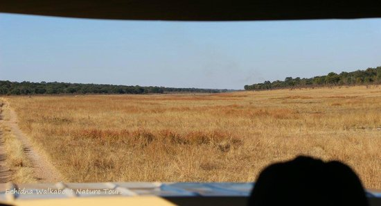 Sable Sands: view of the vlei from our safari vehicle - gorgeous