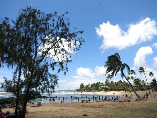 Sunset Kahili Condos: Poipu Beach