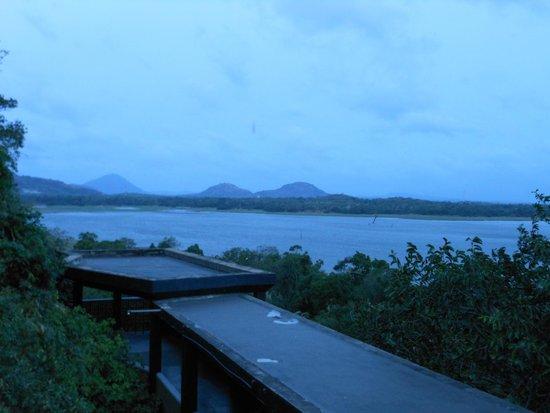 Heritance Kandalama: プールとカンダラマ湖
