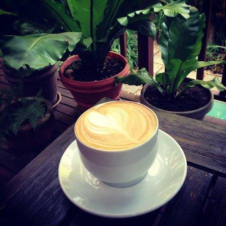 Mythai Guesthouse: Mycaphe Coffee