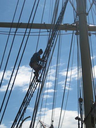 Mystic Seaport: mast climbing demonstration