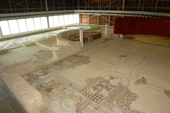 Musée de site Villa-Loupian : Protective roof and walls