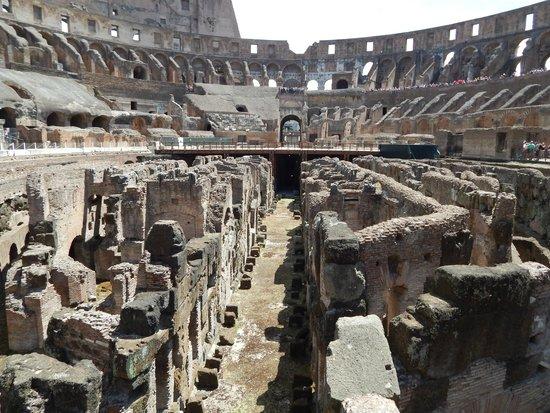 Colosseum: Arena  photo3