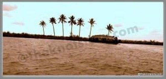 Kerala Backwaters: back waters