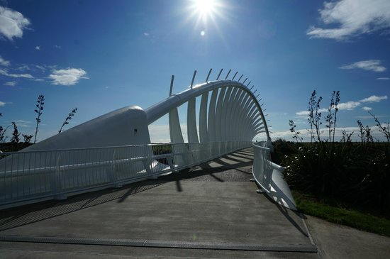 Coastal Walkway: Te Rewa Rewa bridge