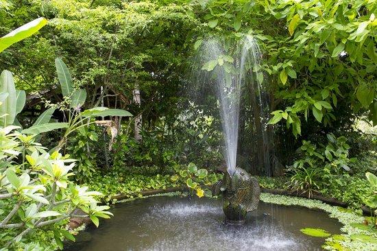 Paradise Beach Resort: Garden