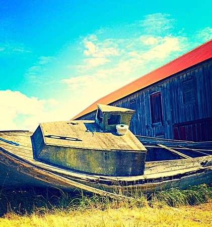 Semiahmoo Resort : A boat