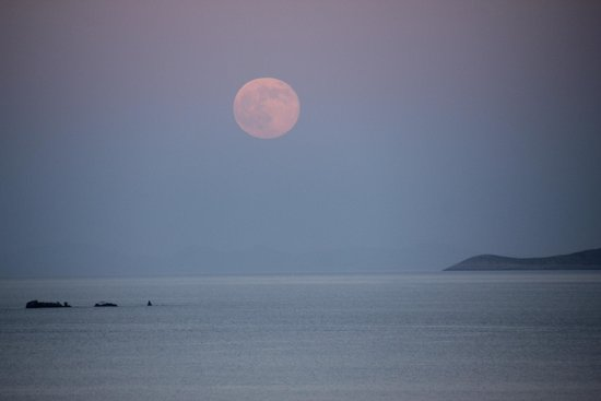 Le Balcon: La luna